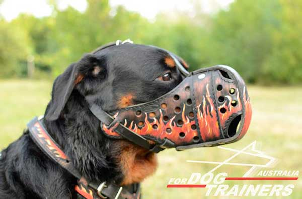 Rottweiller leather muzzle decorated with flames