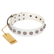 """Grandeur Dog"" FDT Artisan White Leather dog Collar with Engraved Studs"