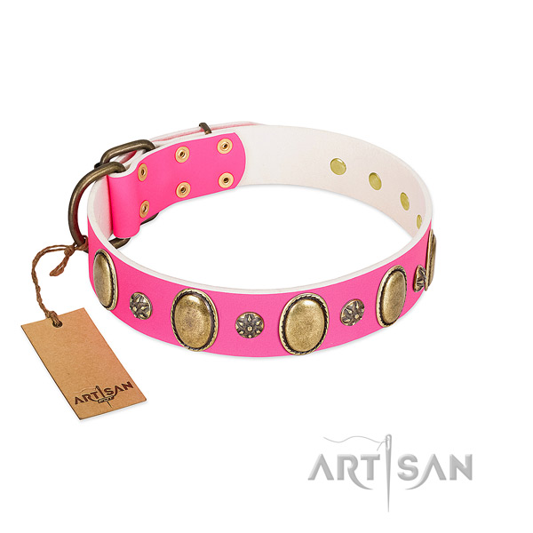 Gentle to touch full grain genuine leather dog collar with corrosion resistant fittings