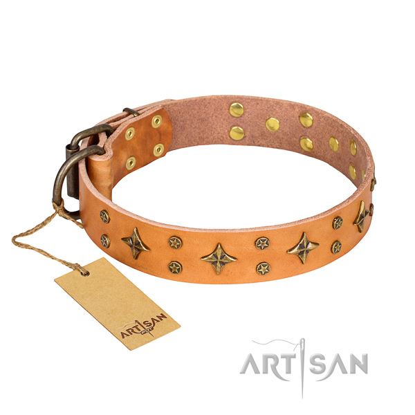Comfy wearing dog collar of durable leather with embellishments