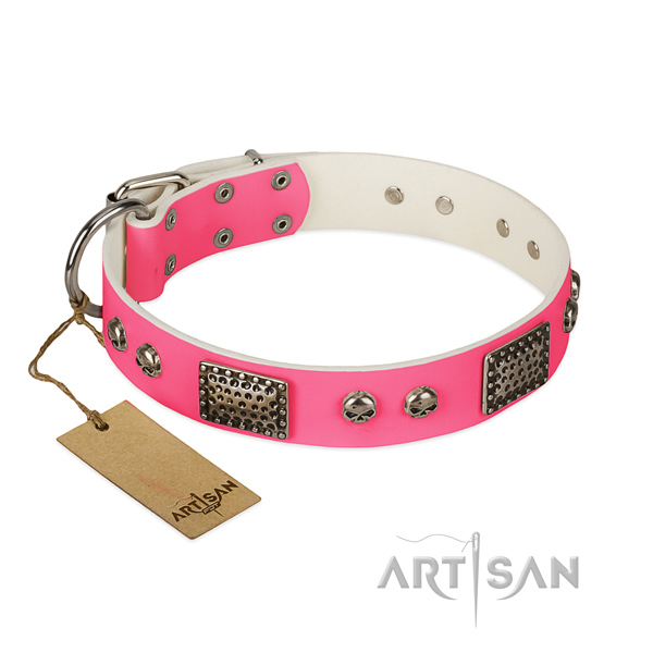 Easy adjustable genuine leather dog collar for everyday walking your doggie
