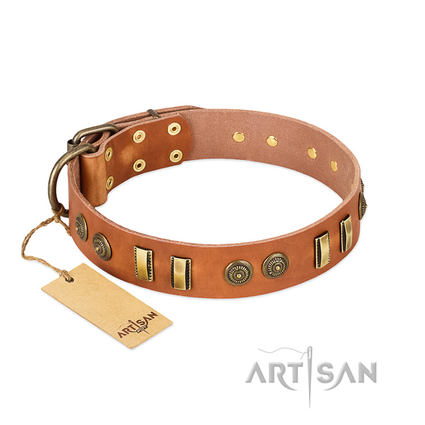 Strong studs on full grain natural leather dog collar for your canine