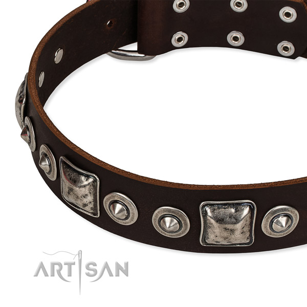 Leather dog collar made of quality material with embellishments