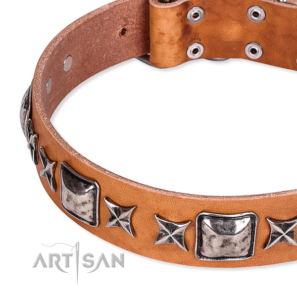 Daily walking embellished dog collar of best quality full grain leather