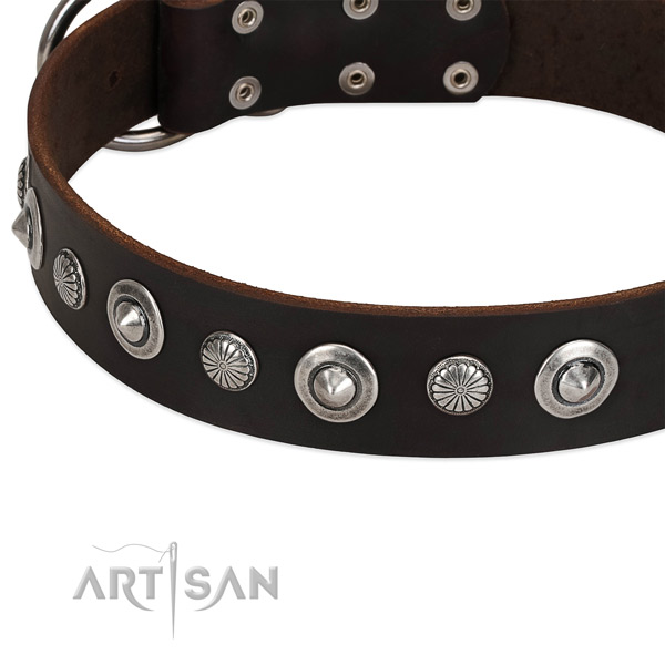 Exquisite adorned dog collar of durable leather