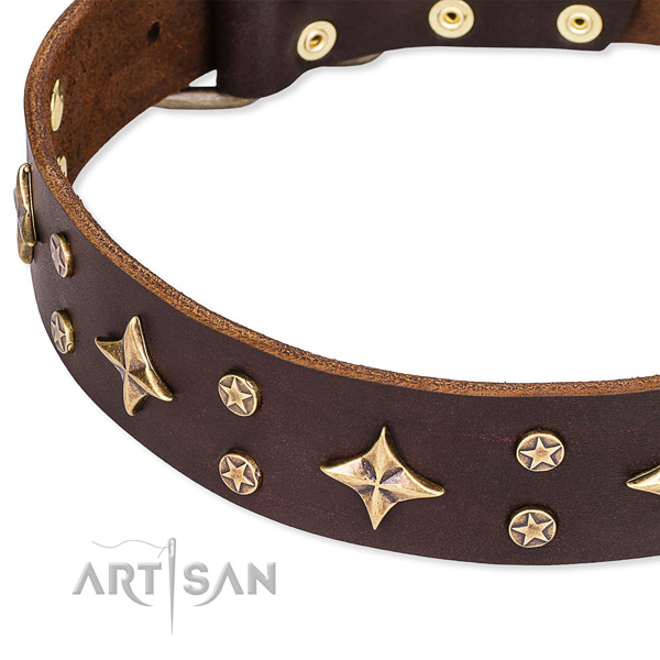 Daily use adorned dog collar of durable genuine leather