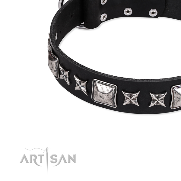 Basic training embellished dog collar of top quality full grain genuine leather