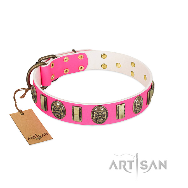 Reliable decorations on full grain leather dog collar for your four-legged friend