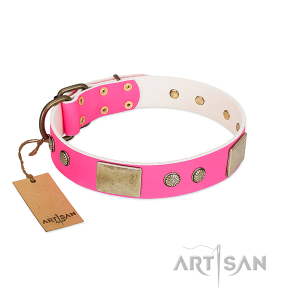 Easy wearing full grain natural leather dog collar for everyday walking your doggie