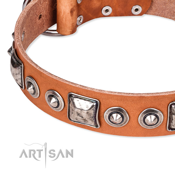 Flexible leather dog collar crafted for your attractive dog