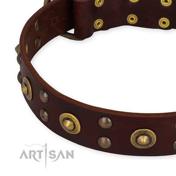 Genuine leather collar with rust-proof D-ring for your impressive dog