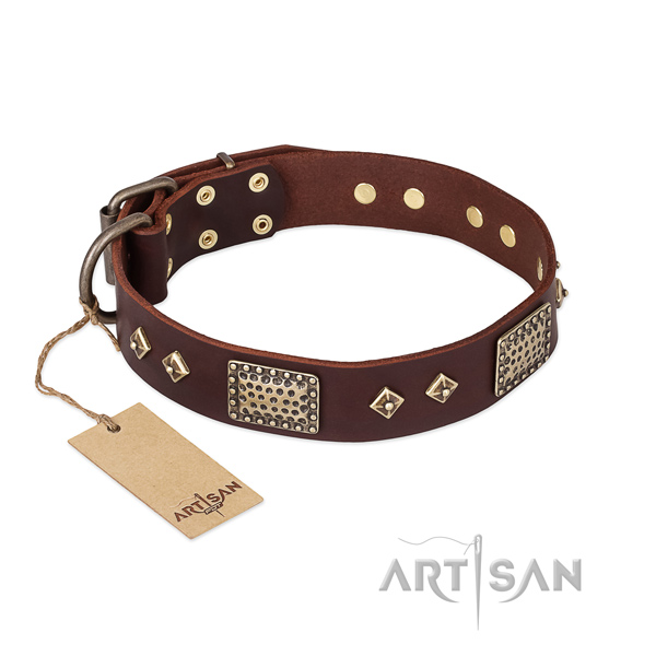 Unusual genuine leather dog collar for everyday use