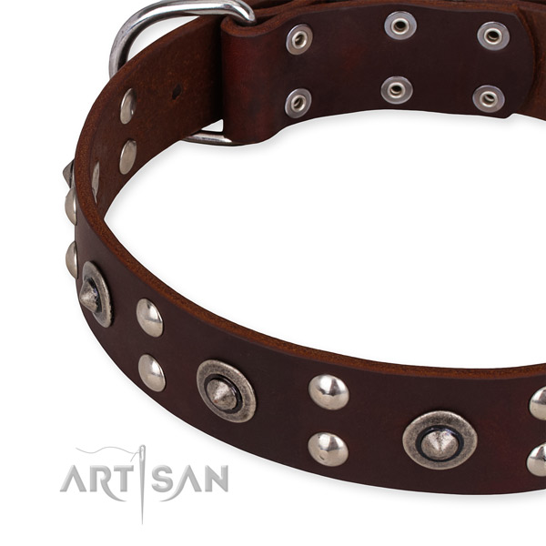 Full grain natural leather collar with rust-proof D-ring for your handsome pet
