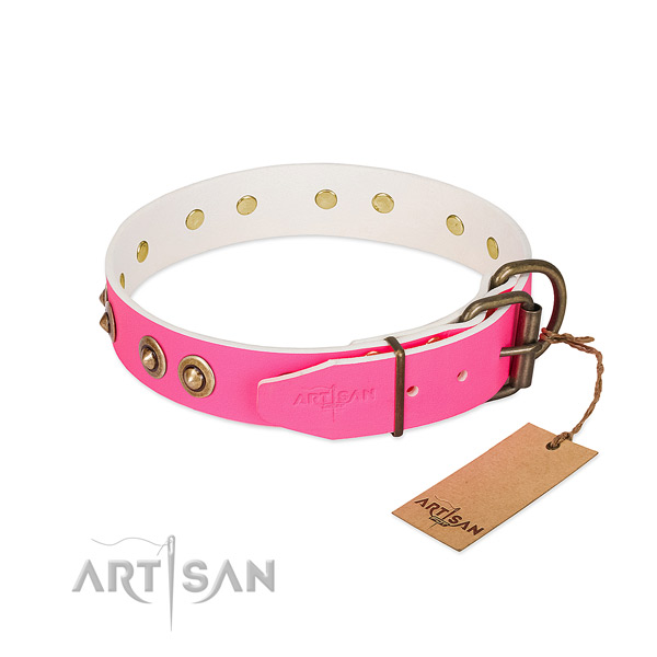 Full grain leather dog collar with corrosion proof traditional buckle and adornments
