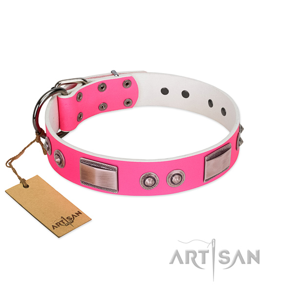 Awesome dog collar of full grain natural leather with adornments