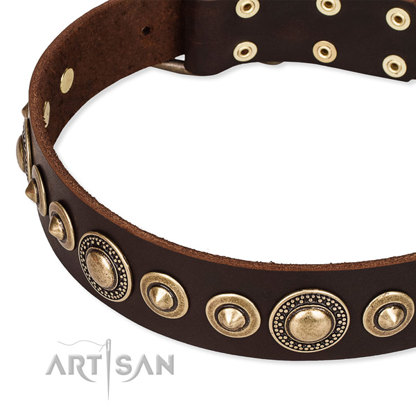Top notch full grain genuine leather dog collar crafted for your lovely doggie