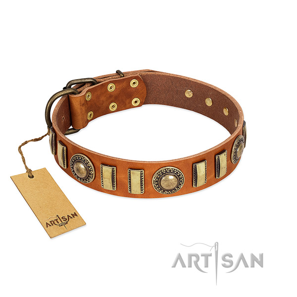 Adorned full grain genuine leather dog collar with reliable buckle