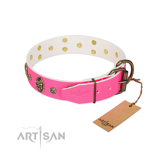 Corrosion proof fittings on genuine leather collar for walking your four-legged friend