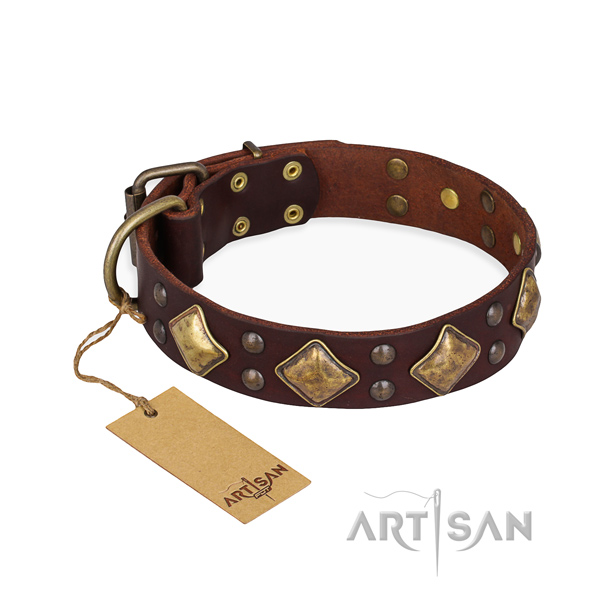 Daily walking perfect fit dog collar with corrosion proof traditional buckle