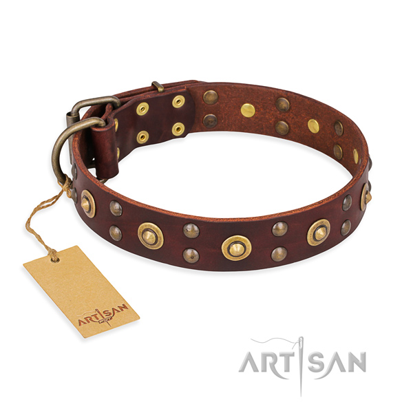 Extraordinary full grain leather dog collar with corrosion resistant D-ring