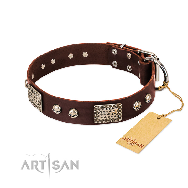 Adjustable leather dog collar for everyday walking your four-legged friend