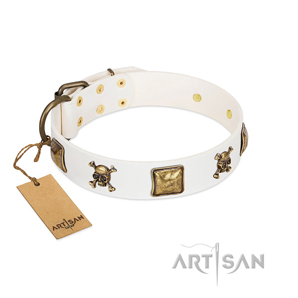 Exceptional natural leather dog collar with corrosion resistant studs