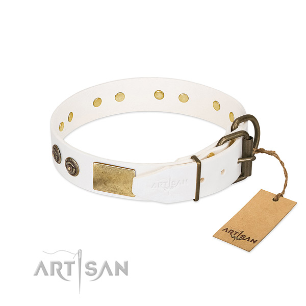 Rust-proof D-ring on full grain natural leather collar for stylish walking your dog