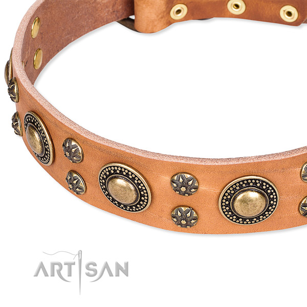 Basic training embellished dog collar of high quality natural leather