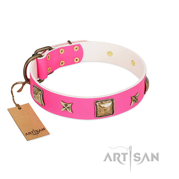 Full grain genuine leather dog collar of high quality material with stunning studs