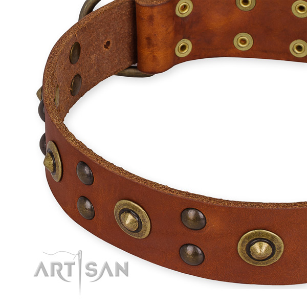 Full grain genuine leather collar with rust-proof traditional buckle for your beautiful doggie