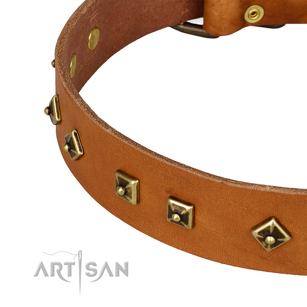 Stylish full grain genuine leather collar for your attractive dog