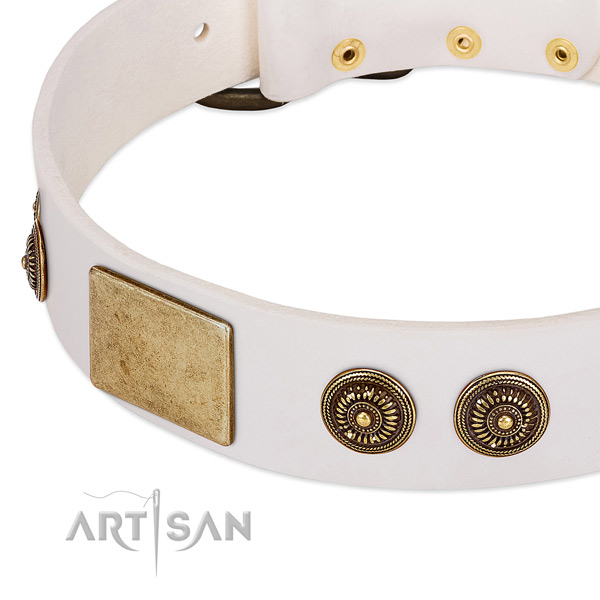 Remarkable dog collar handcrafted for your stylish canine