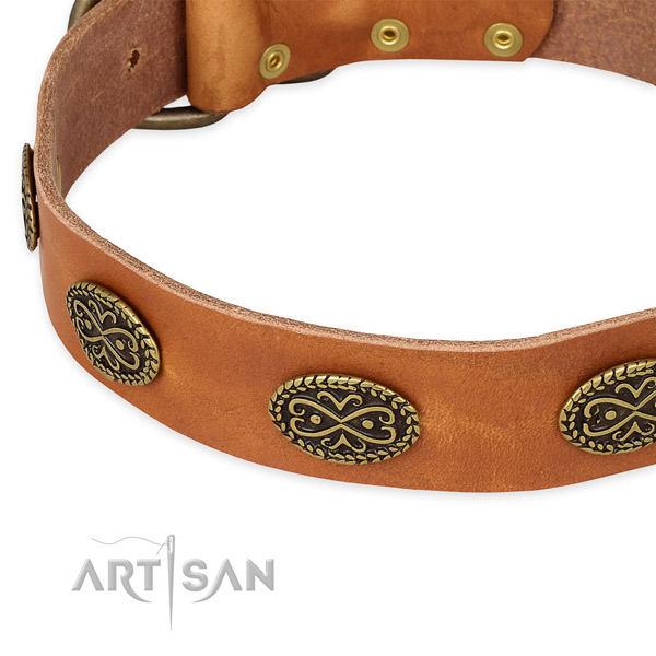 Stylish design genuine leather collar for your beautiful four-legged friend