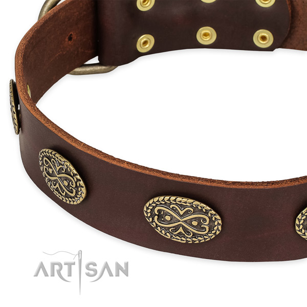 Unusual natural genuine leather collar for your stylish canine