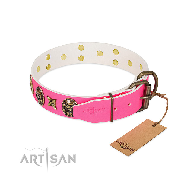 Reliable fittings on full grain leather collar for stylish walking your doggie