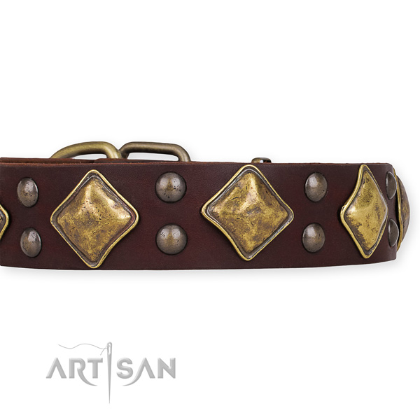 Natural leather dog collar with trendy corrosion proof studs