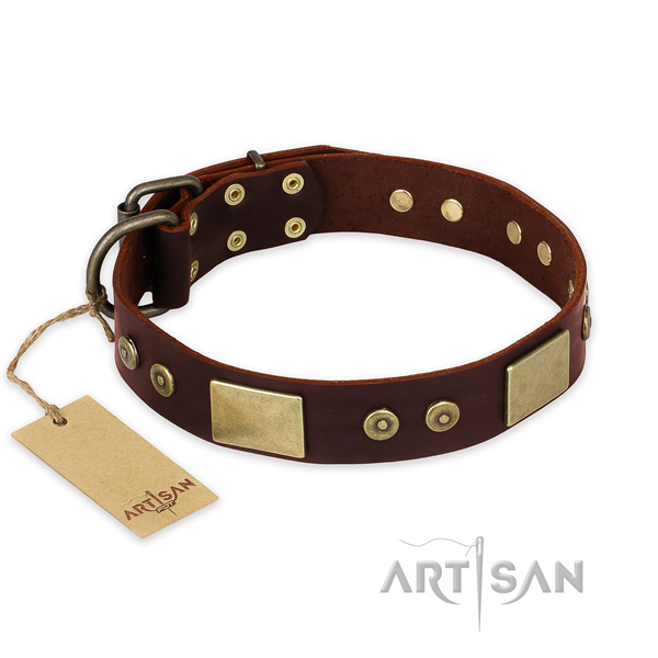 Significant natural genuine leather dog collar for everyday use
