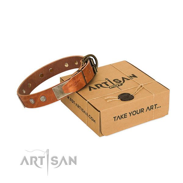 Reliable adornments on dog collar for comfortable wearing