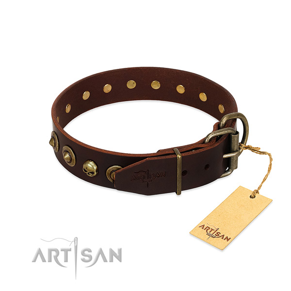 Leather collar with significant studs for your pet