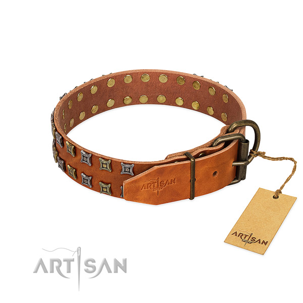 Durable natural leather dog collar created for your canine