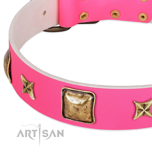 Leather dog collar with inimitable embellishments