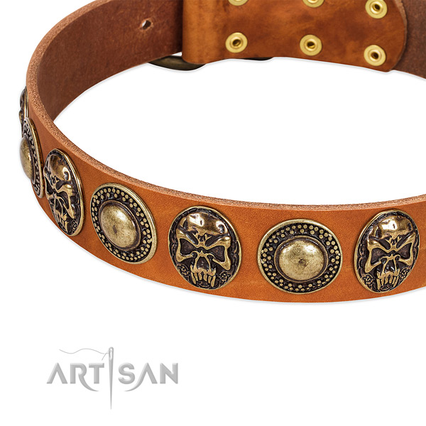 Rust resistant adornments on genuine leather dog collar for your four-legged friend
