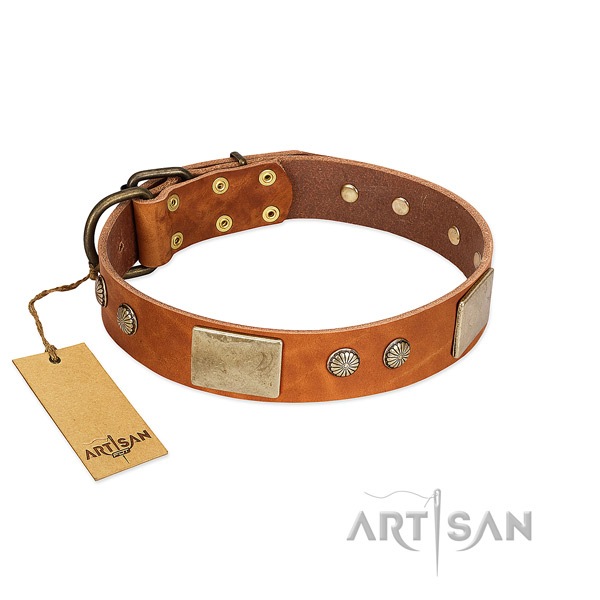 Easy to adjust natural genuine leather dog collar for walking your dog