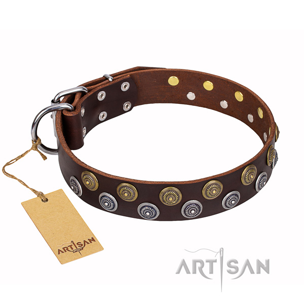 Handy use dog collar of quality full grain natural leather with studs