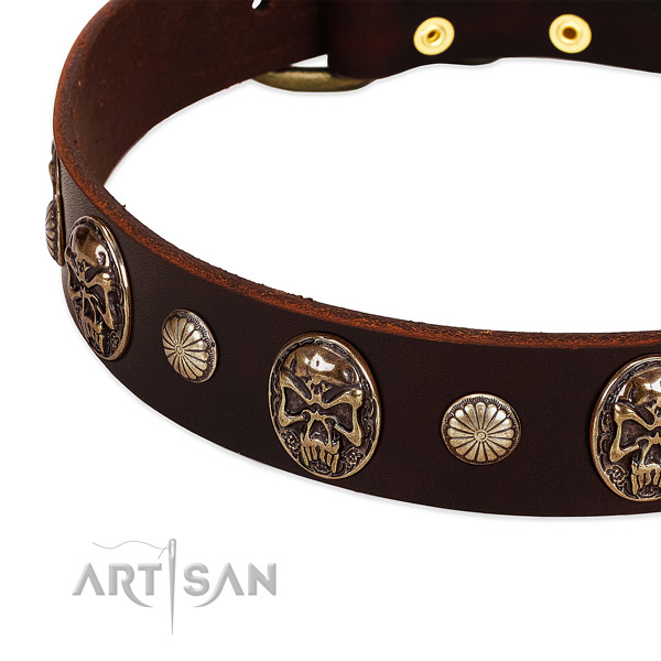 Leather dog collar with adornments for everyday use