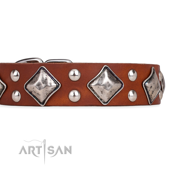 Full grain genuine leather dog collar with unusual rust-proof decorations