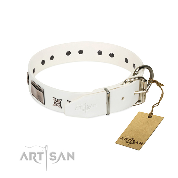 Exquisite collar of full grain leather for your stylish doggie