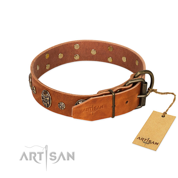Corrosion proof traditional buckle on genuine leather dog collar for your four-legged friend