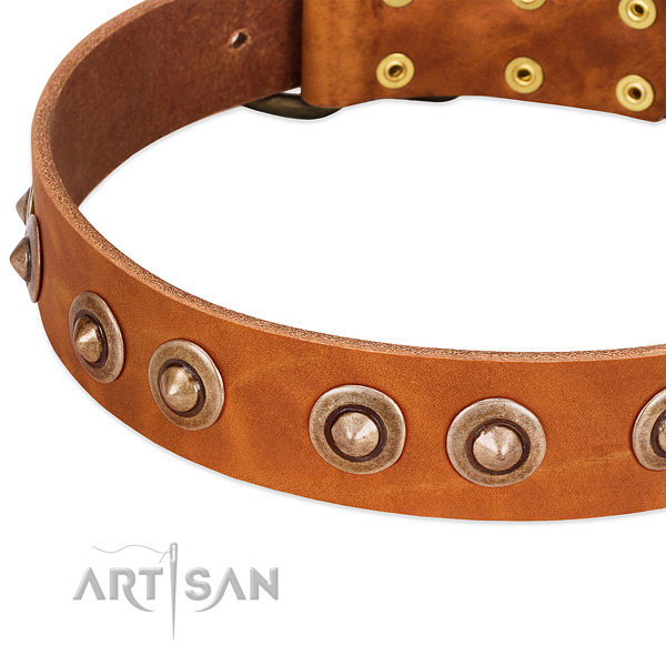 Corrosion resistant hardware on full grain natural leather dog collar for your dog
