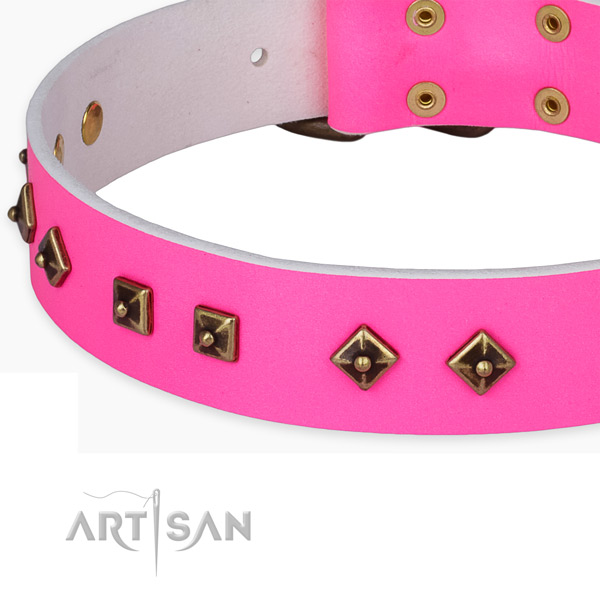 Embellished full grain genuine leather collar for your impressive pet
